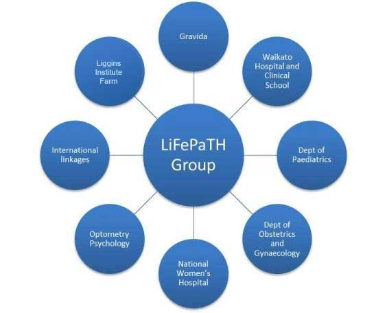 LiFePaTH Group